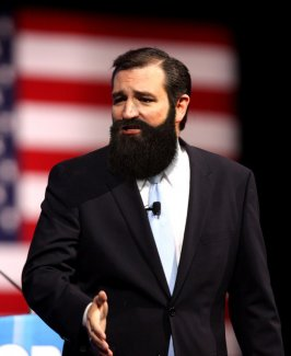 Cruz_Bearded.jpg