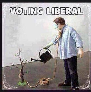 Vote-Liberal.jpg