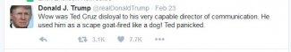 Trump Cruz Fired.JPG