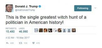 Trump Witch Hunt.JPG