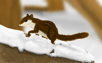 winter_by_colliequest-d8allt2.png